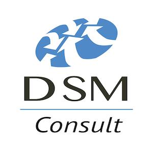 DSM CONSULT